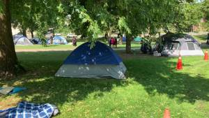 Trees cut in Victoria Park amid tent city in Peterborough