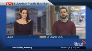 Plastic bag ban does not apply to demerged cities