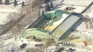 Global1 helicopter captures footage of horse-boarding facility near Okotoks