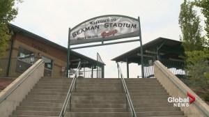 'Okotoks has become a baseball town': Dawgs celebrate 10th anniversary at Seaman Stadium