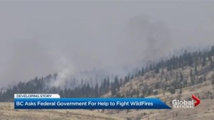B.C. wildfires: Extreme fire risk in Kamloops as evacuees seek shelter