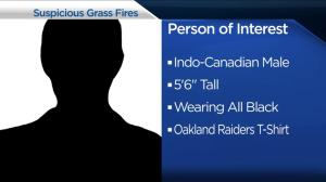 North Van RCMP investigating suspicious grass fires