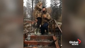 Man proposes in rubble of home destroyed by California wildfires