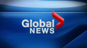 Global News Morning October 20