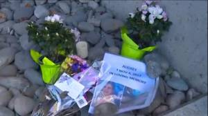 Growing memorial to young girl who fell from Burnaby condo tower