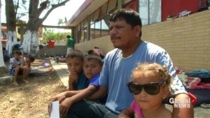 Family fleeing poverty, violence in Mexico's migrant caravan seek American dream