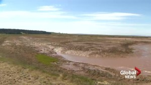 Multi-level government funding committed to study dikes at N.S., N.B. border