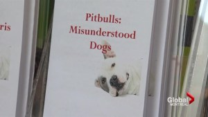 City launches pit bull ban appeal