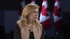 Christine Elliott says if Brown can clear his name, he can run for Ontario PCs