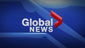 Global News at 5 Edmonton: Nov. 13