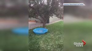 Videos show hail in Calgary