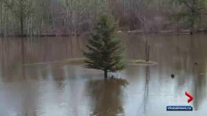 Westlock County declares local state of emergency due to flooding