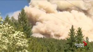 Philpott Road wildfire under control near Kelowna