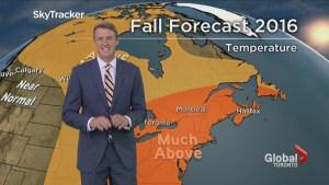 Anthony Farnell's fall forecast: Fair & Fabulous