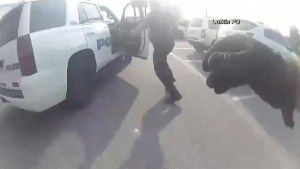 Handcuffed Texas woman steals police cruiser right in front of officers