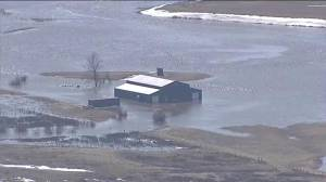 Global1 footage shows home underwater in southern Alberta