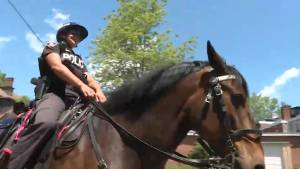 Murney puts the horsepower in the Kingston Police Service