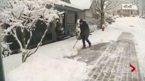 Vancouver's first snowfall of the season