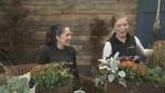 Gardenworks: Front Porch Planters