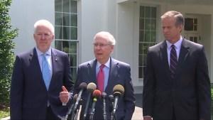 'No harm done' if Senate backs straight Obamacare repeal: Senate leader