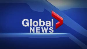 Global News Hour at 6 Edmonton: March 25