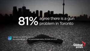 Majority of Torontonians agree their city has a serious gun problem: Poll