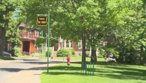 Motion to rename Vimy Park passes