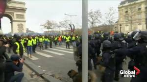French police deploy dogs during 'yellow vest' protests at Arc de Triomphe
