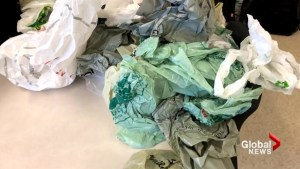 Moncton students support ban on single-use plastic bags