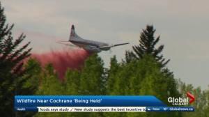 Wildfire near Cochrane 'being held'