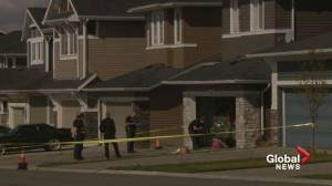 Calgary and Edmonton police team up to find person of interest in homicides (02:11)