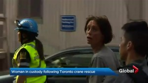 Woman in custody after rescue from downtown crane