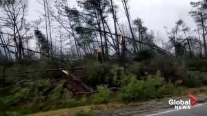 Severe thunderstorms cause damage near Harris and Muscogee counties, Georgia
