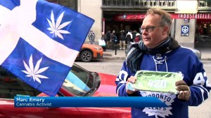 Cannabis activist hopes to change Quebec marijuana laws