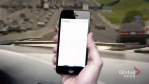 OPP release disturbing stats on distracted driving