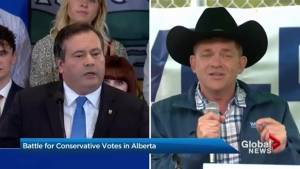 The battle for PC votes heats up in Alberta (02:11)