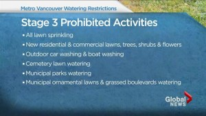Metro Vancouver stage 3 water restrictions now in effect