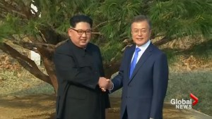 Kim Jong Un and Moon Jae-In plant tree for peace