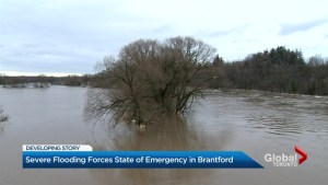 Ice jam near Cambridge causes flooding in Brantford