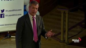 'They would build a European army': Nigel Farage fires up pro-Brexit rally