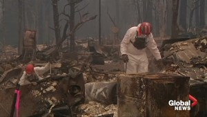 Paradise Lost: Forensic teams search for remains in ashes of California's deadliest wildfire