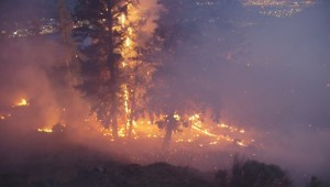 Crews fight growing wildfire near Kamloops