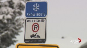 Officials look for alternatives as frustrations mount over Calgary's snow route parking ban
