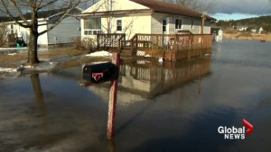 Saint John neighbourhood pulls together as water rises