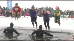What it's really like to do the Polar Plunge