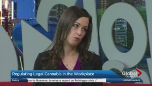 What employers and employees need to know about cannabis in the workplace