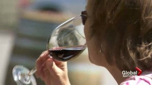 Women consuming almost as much alcohol as men