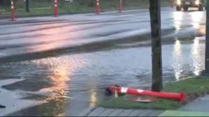 Heavy rain causes flooding across Metro Vancouver