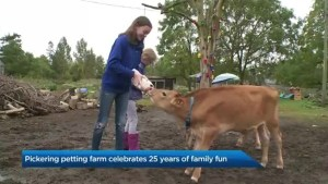 Pickering free-range petting farm celebrates 25 years in business