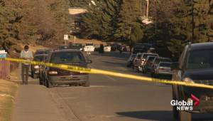 Calgary police search for suspect in Marlborough shooting